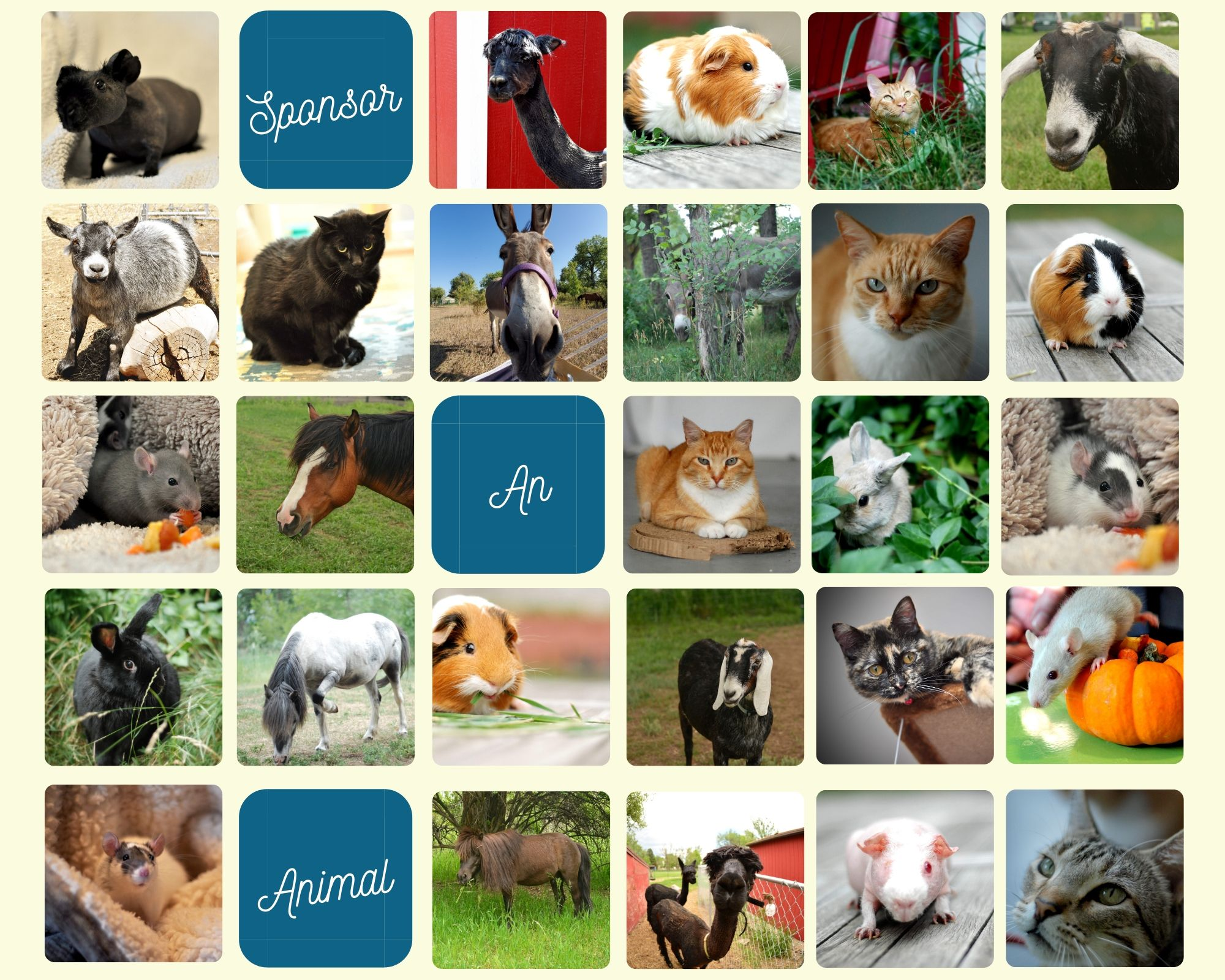 All Animals Collage